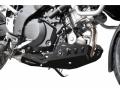 Bugspoiler/Motorschutz