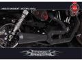 Remus Custom Exhaust SPORTSTER